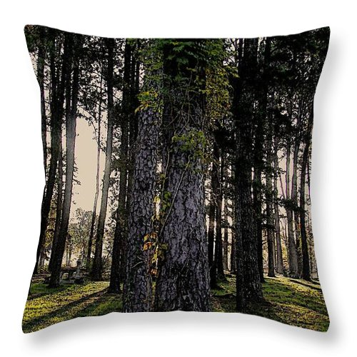 Trees Throw Pillow featuring the photograph All For One by Steven Lebron Langston