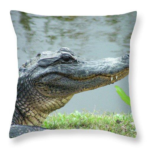 Gator Throw Pillow featuring the digital art Alligator Cameron Prairie Nwr La by Lizi Beard-Ward