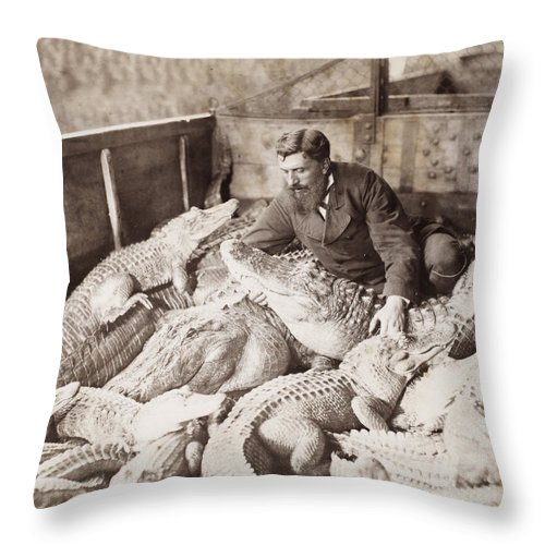 1880 Throw Pillow featuring the photograph Alligators & Caymans by Granger