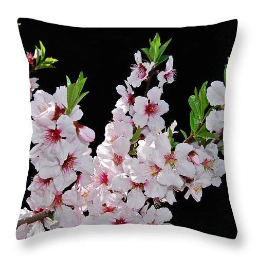 Almond Throw Pillow featuring the photograph Almond Blossom 0979 by Michael Peychich