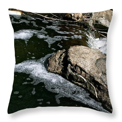 Outdoors Throw Pillow featuring the photograph Almost Over by Susan Herber