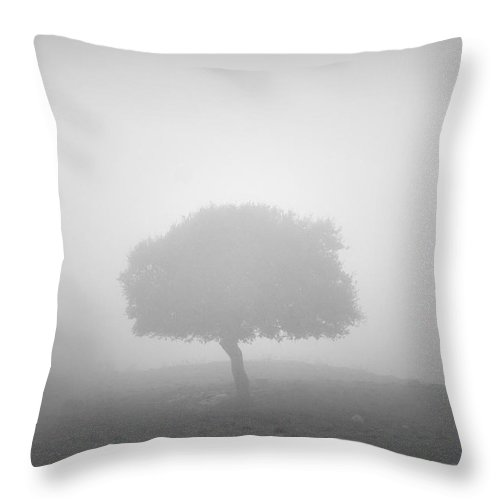 Black And White Throw Pillow featuring the photograph Alone In The Fog by Guido Montanes Castillo