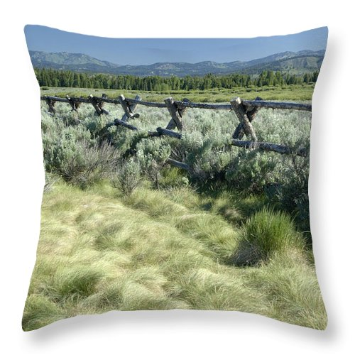 Grand Teton National Park Throw Pillow featuring the photograph Along The Fence by Sandra Bronstein