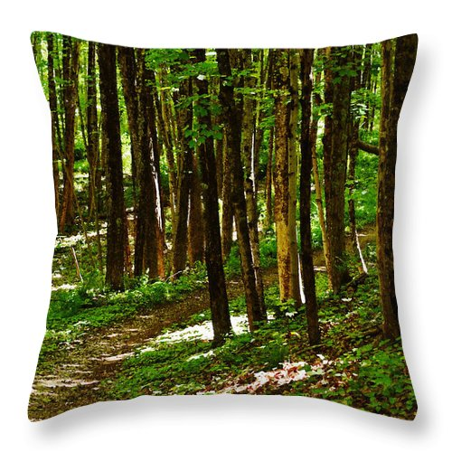 Trees Throw Pillow featuring the photograph Along The Hiking Trail by Mary Anne Williams