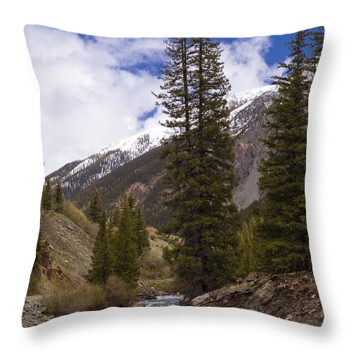 Silverton Throw Pillow featuring the photograph Along The Silverton Northern by Tim Mulina
