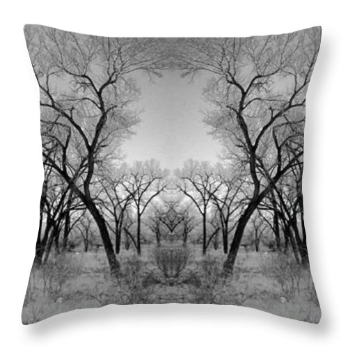 Landscape Throw Pillow featuring the photograph Altered Series - Bare Double by Grace Art Photography