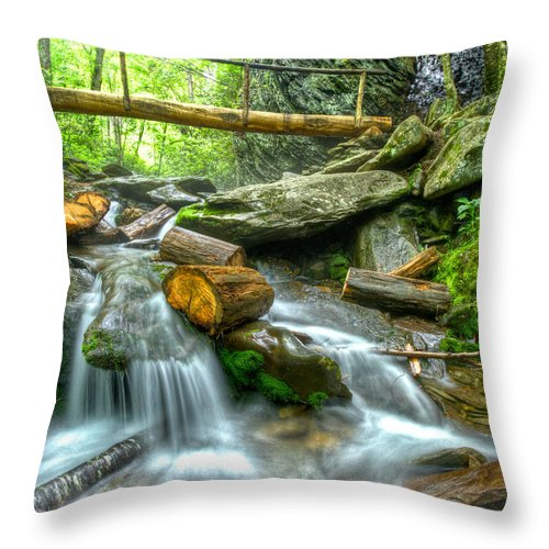 Appalachia Throw Pillow featuring the photograph Alum Cave Bluff Trail by Debra and Dave Vanderlaan
