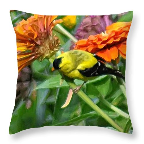 American Goldfinch Throw Pillow featuring the photograph American Goldfinch by Bill Cannon