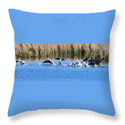 Pelicans Throw Pillow featuring the photograph American White Pelicans by Greg Norrell