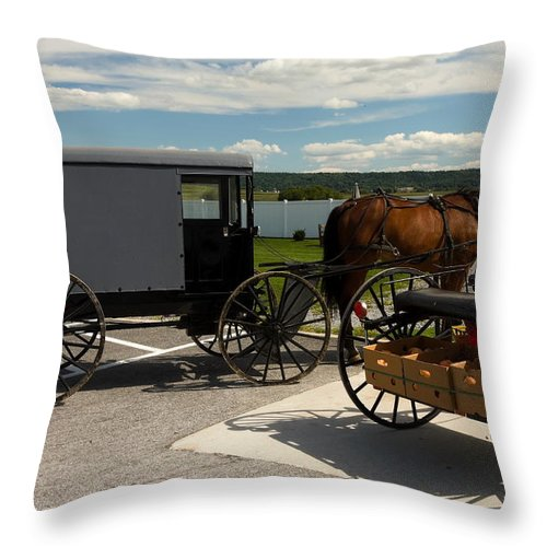 Enclosed Amish Buggy Throw Pillow featuring the photograph Amish Buggy by Sally Weigand