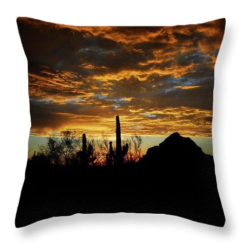 Arizona Throw Pillow featuring the photograph An Arizona Desert Sunset by Saija Lehtonen