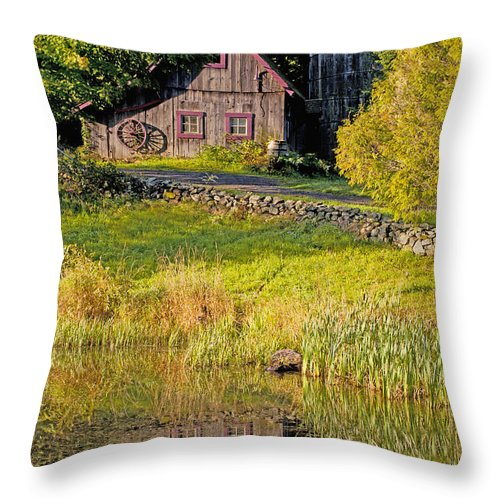 Autumn Throw Pillow featuring the photograph An Old Barn Reflected In The Pond Water by David Chapman