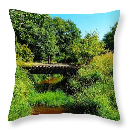 Bridges Throw Pillow featuring the photograph An Old Rail Road Bridge by Jeff Swan