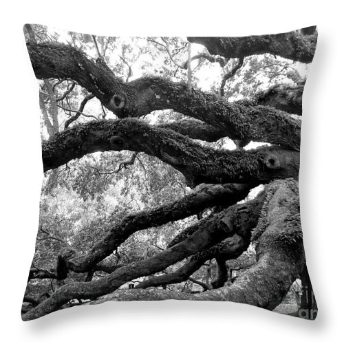 Angel Throw Pillow featuring the photograph Angel Oak Tree by Melody Jones