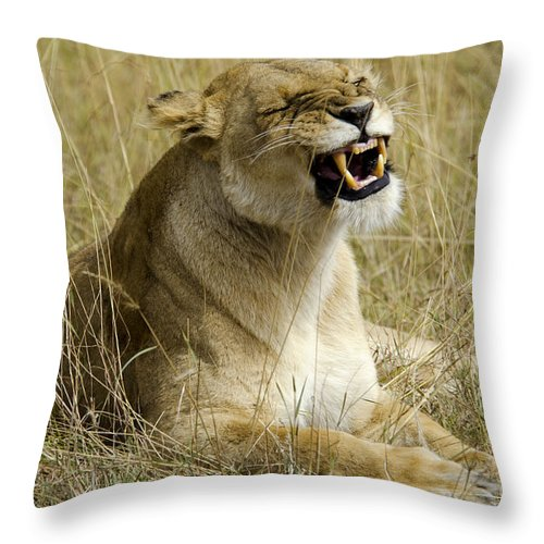 Lion Throw Pillow featuring the digital art Angry Lioness by Pravine Chester