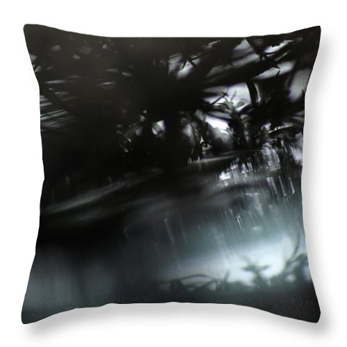 Abstract Throw Pillow featuring the photograph Another Place by Susan Capuano