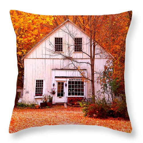 Antiques Store Throw Pillow featuring the photograph Antiques Store by Jack Schultz