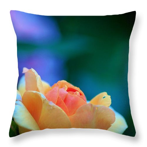 Floral Throw Pillow featuring the photograph Any Corner In Toronto Will Do by Thomas J Nixon