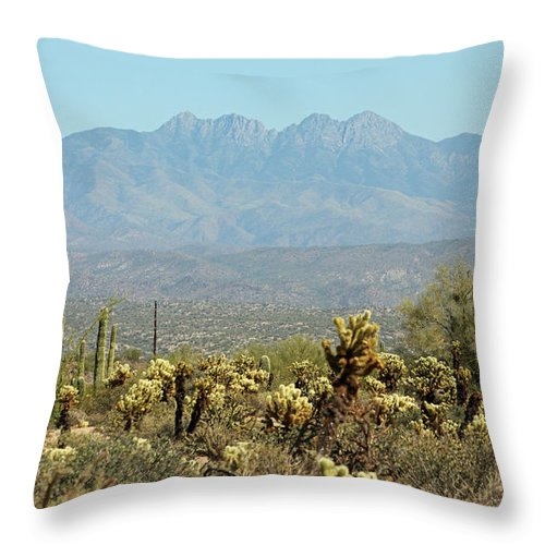 Arizona Throw Pillow featuring the photograph Arizona Scenic V by Suzanne Gaff