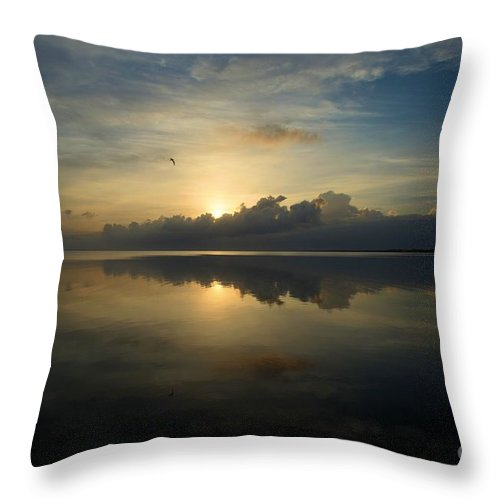 North Carolina Outer Banks Throw Pillow featuring the photograph Arrow On The Horizon by Adam Jewell