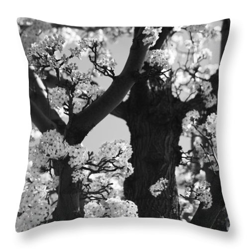 Spring Throw Pillow featuring the photograph As Your Lips Touched My Cheek by Laurie Search