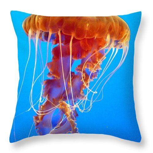 Jellyfish Throw Pillow featuring the photograph Ascending Jellyfish by Carla Parris