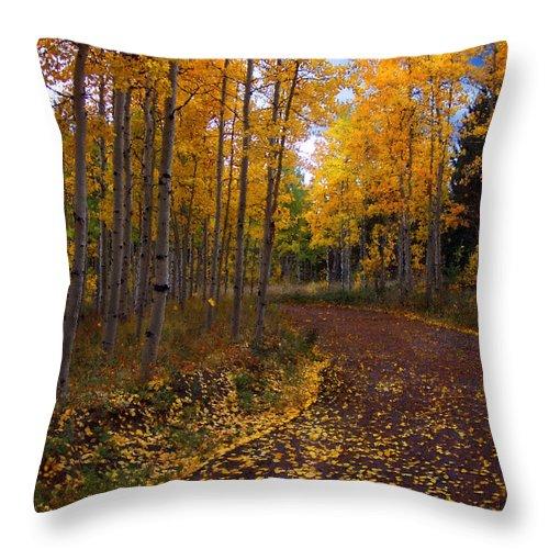 Aspen Trees Throw Pillow featuring the mixed media Aspen Lane by Carol Cavalaris