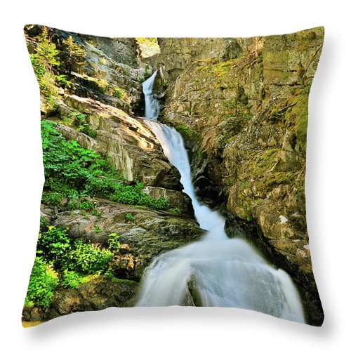Glacier National Park Throw Pillow featuring the photograph Aster Falls by Greg Norrell