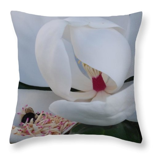 Nature Throw Pillow featuring the photograph At Breakfast 3 by John Powell