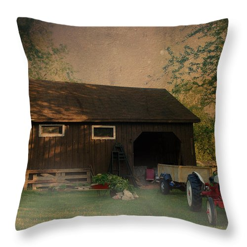 Farm Throw Pillow featuring the photograph At The Farm by Robin Webster