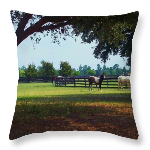 Horse Throw Pillow featuring the photograph At The Ranch by Rhonda Lee