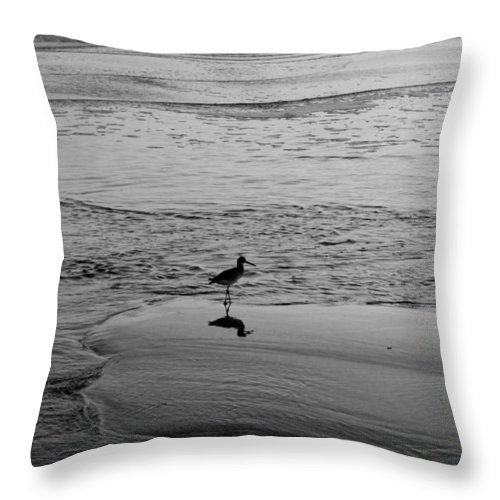Bird Throw Pillow featuring the photograph At Twilight In Black And White by Suzanne Gaff