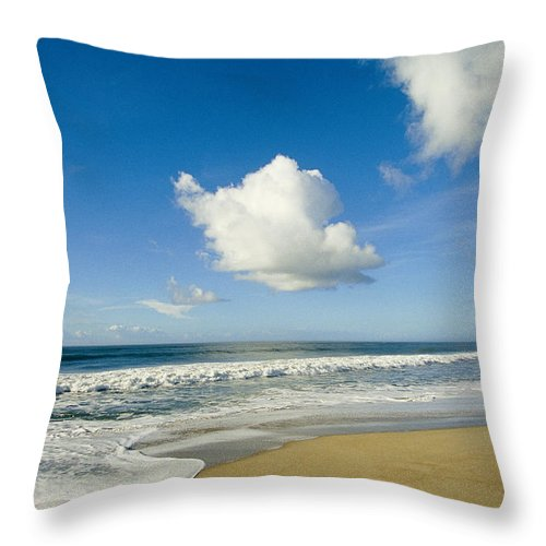 North America Throw Pillow featuring the photograph Atlantic Ocean Waves Break On The Beach by Skip Brown