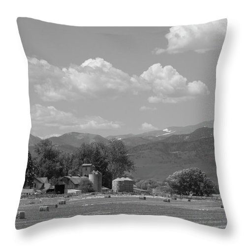 August Throw Pillow featuring the photograph August Hay 75th St Boulder County Colorado Black And White by James BO Insogna