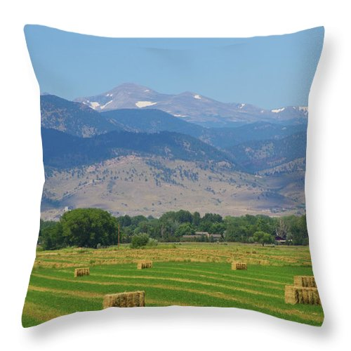 August Throw Pillow featuring the photograph August Hay Boulder County Colorado by James BO Insogna