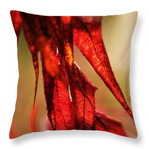 Flowers Throw Pillow featuring the photograph Autumn Afternoons... by Arthur Miller