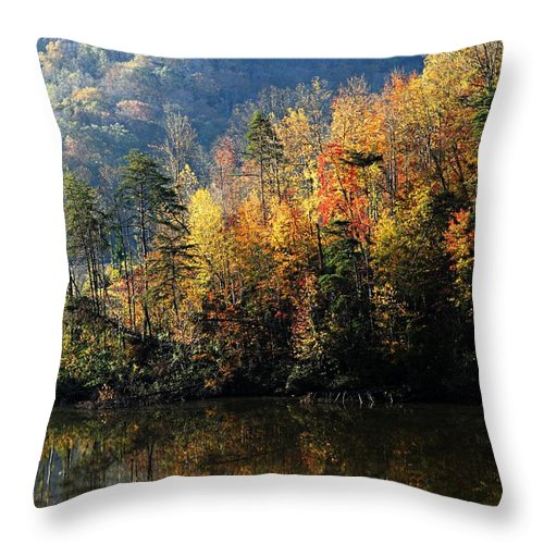 Jenny Wiley State Park Throw Pillow featuring the photograph Autumn At Jenny Wiley by Larry Ricker