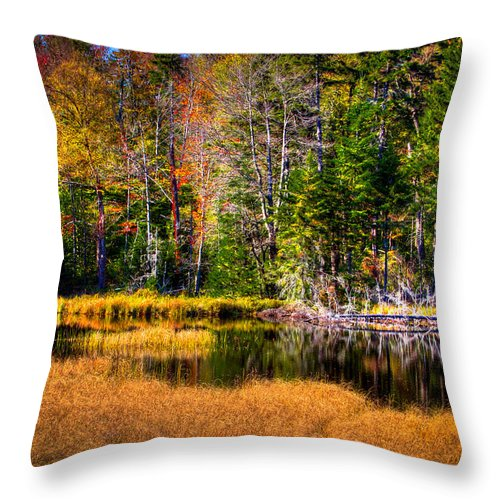The Adirondacks Throw Pillow featuring the photograph Adirondack Color 52 by David Patterson