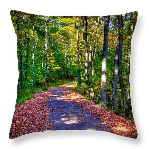 The Adirondacks Throw Pillow featuring the photograph Adirondack Color 53 by David Patterson