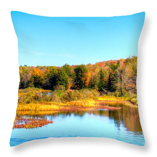 The Adirondacks Throw Pillow featuring the photograph Adirondack Color 54 by David Patterson