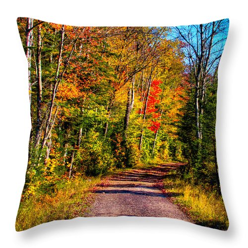 The Adirondacks Throw Pillow featuring the photograph Adirondack Color 56 by David Patterson