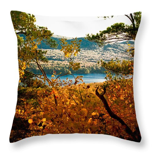 The Adirondacks Throw Pillow featuring the photograph Bald Mountain View by David Patterson