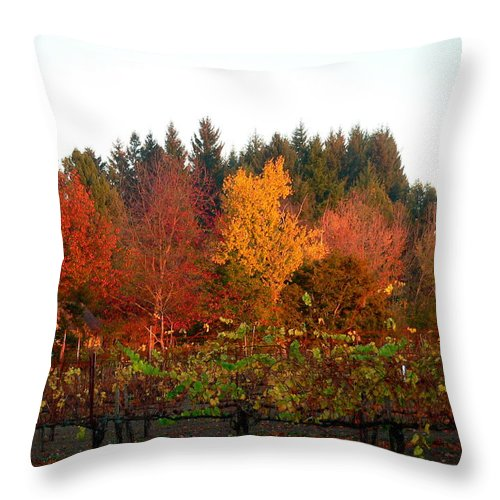 Vineyard Throw Pillow featuring the photograph Autumn Colors In The Vineyard by Jeff Lowe