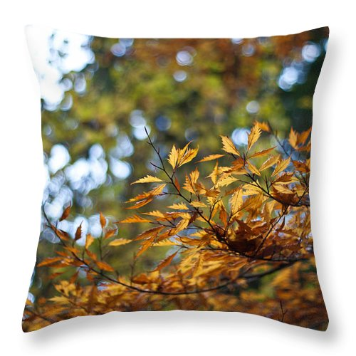 Autumn Throw Pillow featuring the photograph Autumn Crescendo by Mike Reid