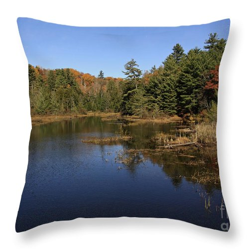 Autumn Day At The Lake In Algonquin Provincial Park Throw Pillow featuring the photograph Autumn Day At The Lake In Algonquin Provincial Park by Inspired Nature Photography Fine Art Photography