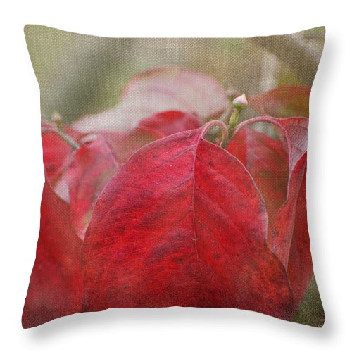 Nature Throw Pillow featuring the photograph Autumn Dodwood Leaves by Debbie Portwood