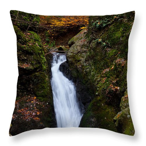 Autumn Throw Pillow featuring the photograph Autumn Falls by Karol Livote