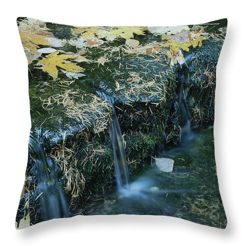 Geography Throw Pillow featuring the photograph Autumn Foliage Floats Upon The Surface by Marc Moritsch