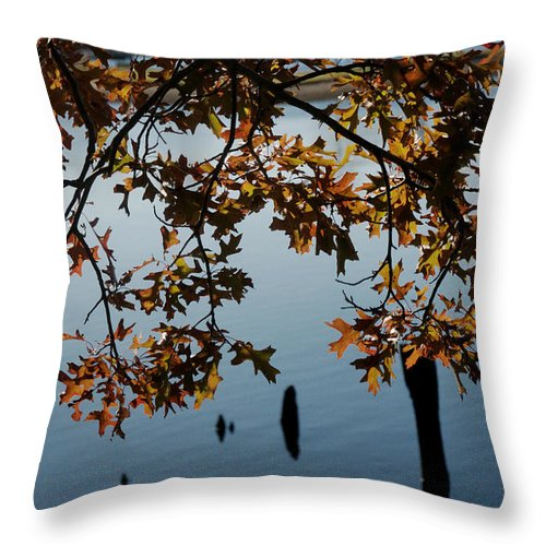 Autumn Throw Pillow featuring the photograph Autumn Gold On The Water by Barry Doherty