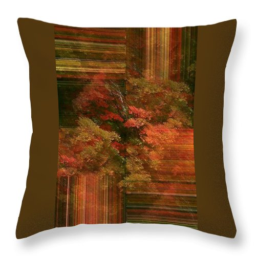 Throw Pillow featuring the photograph Autumn Illusion by Barbara S Nickerson